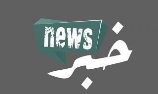 طفل ينجو من دب ضخم بطريقة شجاعة (فيديو)