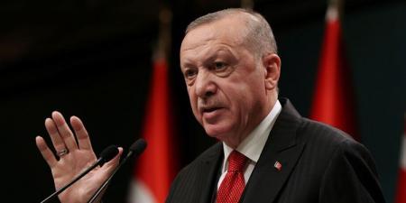 أردوغان: نبدأ مرحلة عودة الحياة إلى طبيعتها بشكل منضبط